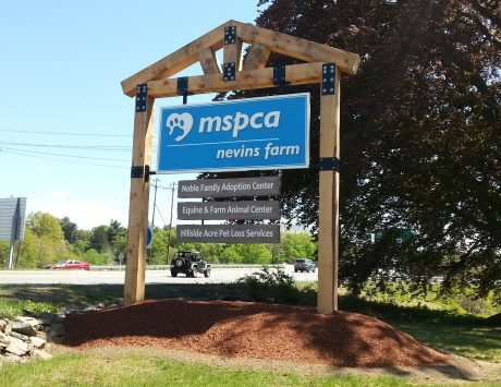 MSPCA Pylon Sign